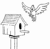 Bird About To Land On House Coloring Pages  Best
