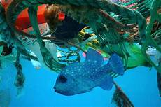 The Great Pacific Garage Patch by The Great Pacific Garbage Patch Is Gobbling Up More