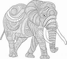 ausmalbilder giraffe elefant aiquruguay