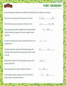 plant vocabulary view 6th grade life science worksheet sod plant vocabulary view 6th grade life science worksheet sod