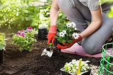 Arbeiten Im Garten - jardin fleurs de printemps au meilleur prix