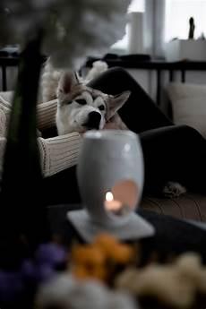 Zeit Zum Relaxen 7 Tipps Zum Entspannen F 252 R Zuhause