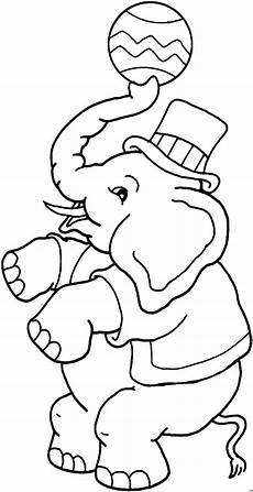 elefant im zirkus ausmalbild malvorlage tiere