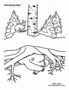 free printable coloring pages hibernating animals 17014 winter animal mural survival adaptations