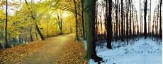 Ausmalbilder Herbst Und Winter Aschblondines Haar Haarpflege In Herbst Winter