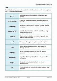 ks3 plants photosynthesis worksheets 13619 science teaching resource libraries for ks3 and ks4 teachit science