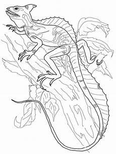 mandala coloring pages lizard 17931 lizards coloring page animal coloring pages coloring pages mandala coloring pages