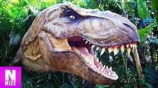 tyrannosaurus rex k 246 nig der dinosaurier