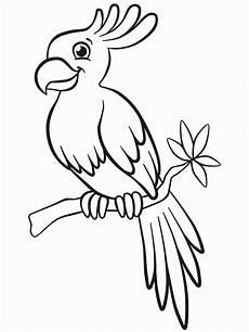 Malvorlage Papagei Einfach Kinderbilder Zum Ausmalen 25 Liebenswert