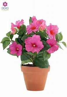 künstliche blumen für draußen k 252 nstliche petunien blumen pink im topf 30 cm