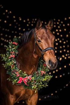 merry christmas wreath christmas horses pictures with horses