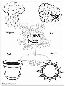 what plants need worksheets grade 13590 image result for what plants need to grow worksheet education worksheets plants