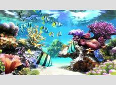 Sim Aquarium   Screensaver & Live Wallpaper   YouTube