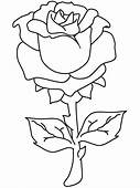 One Beautiful Rose Coloring Page  Download & Print Online