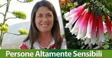 persone altamente sensibili ti rispecchi persone altamente sensibili e fiori australiani dott ssa