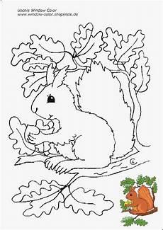 Herbst Ausmalbilder Kindergarten 172 Best Sachunterricht Ricerca Ambientale Images On
