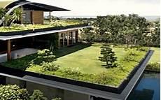 toit terrasse vegetal les informations 224 conna 238 tre sur la toiture v 233 g 233 tale