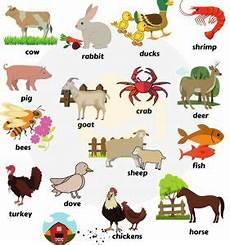 Gambar Hewan Beserta Nama Bahasa Inggris