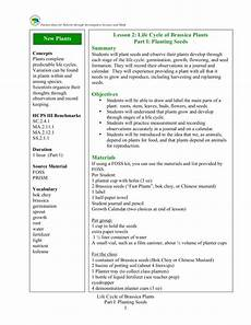 life cycle of brassica plants planting seeds lesson plan
