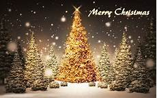 merry christmas tree free download wallpaper 2017