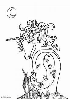 Malvorlagen Cinderella Unicorn M 228 Rchen Malvorlagen Kostenlos Zum Ausdrucken