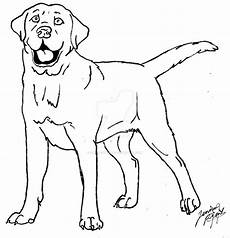 labrador coloring page by canis simensis on deviantart