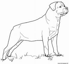 rottweiler coloring pages printable