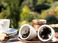 kaffeesatz zum düngen kaffeesatz 5 hacks f 252 r den garten eat smarter