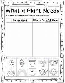 worksheets on plants cycle 13606 all about plants and seeds plant cycle observation journal crafty