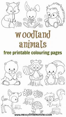woodland animals coloring pages 17187 woodland animal colouring pages
