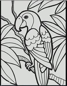 Kumpulan Sketsa Gambar Burung Elang Hantu Merpati Merak