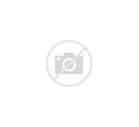 Image result for abaldonami3nto