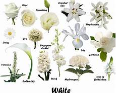 Names Of White Flowers For Wedding