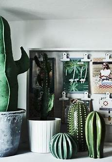 a collection of decorative cacti and postcards neue