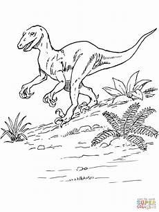 Ausmalbilder Dinosaurier Fleischfresser Ausmalbild Deinonychus Dinosaurier Ausmalbilder