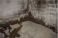 basement waterproofing toronto gta basement problems