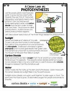 plants and photosynthesis worksheets 13616 differentiated photosynthesis reading passage activities at home learning with images