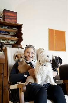 Wohnen Mit Hund Callwey