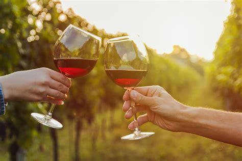 Allergie Vin Rouge