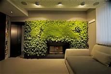 parete giardino giardino verticale sundar italia cose di casa