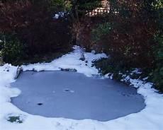 winter pond maintenance pond stars uk