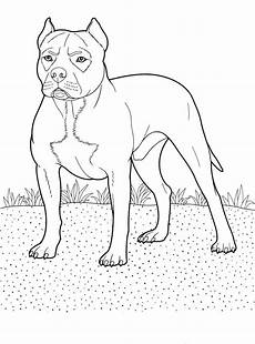 wood animals coloring pages 17194 87 best images about wood burning on deer ducks and wood burning stencils