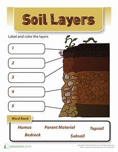 plants and soil worksheets 13633 2nd grade earth space science worksheets free printables education science