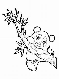 n de malvorlage panda panda