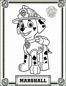 paw patrol wallpaper paw patrol marshall colouring