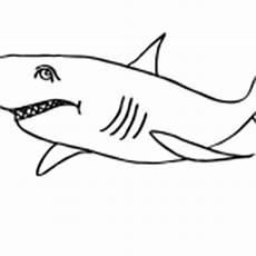 haifisch ausmalbilder malvorlagen kostenlos ausdrucken