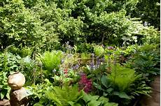 types of garden shade in pictures gardenersworld com
