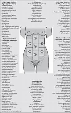 abdominal diagram differential diagnosis acute abdominal adapted from malbrain et scientific