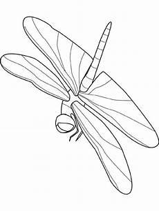 Malvorlagen Insekten Pdf Insekten Malvorlagen Malvorlagen1001 De