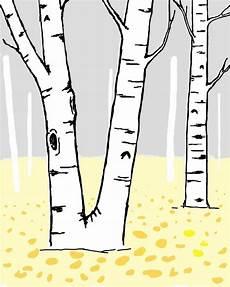 Birch Tree Clipart